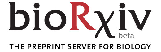 bioRxiv beta The Preprint Server for Biology graphic