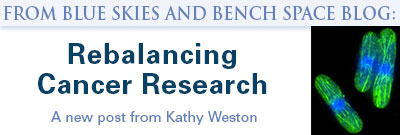 Rebalancing cancer research. A new post from Kathy Weston graphic