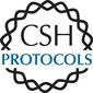 CSH Protocols logo art