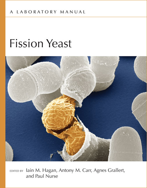Fission Yeast: A Laboratory Manual cover image