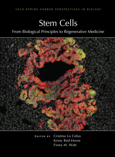 Stem Cells: From Biological Principles to Regenerative Medicine cover image