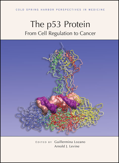 The p53 Protein: From Cell Regulation to Cancer cover image