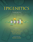 Epigenetics, Second edition
