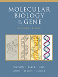 Molecular Biology of the Gene, Seventh Edition