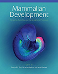 Mammalian Development: Networks, Switches, and Morphogenetic Processes cover image