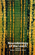 Neurobiology of the Leech