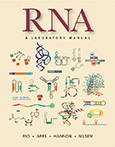 RNA: A Laboratory Manual cover art
