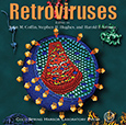 Retroviruses CD